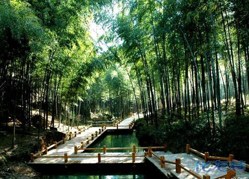 10月17日重阳南山登高日,竹海温泉不眠夜——再现溧阳