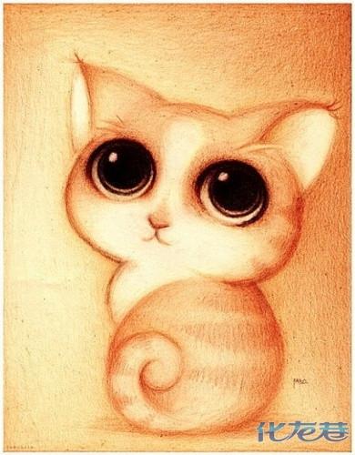 萌得不能再萌的小动物,它们就是很萌很可爱!