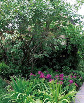 别墅庭院的植物配置