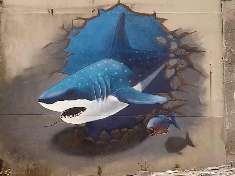 爆几张我们画鲨鱼时的照片,悲剧的是小组连个像样的队服都木有只能先