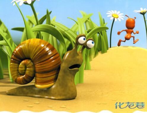 蜗牛睡觉照片 可爱