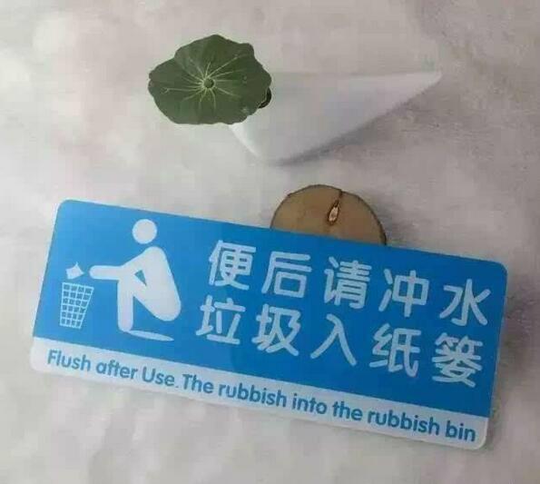 扔进纸篓or用马桶冲走?